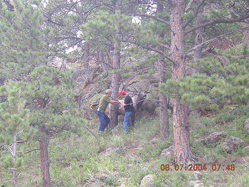 2004 Bowhunters Weekend Shooters get a shot at a